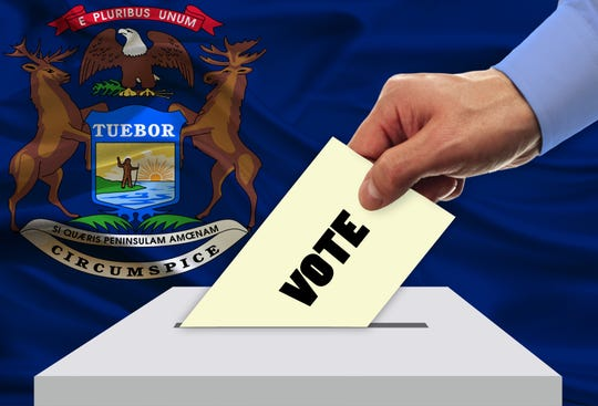 The Aug. 4 primary features competitive races in several state House primaries in Detroit.